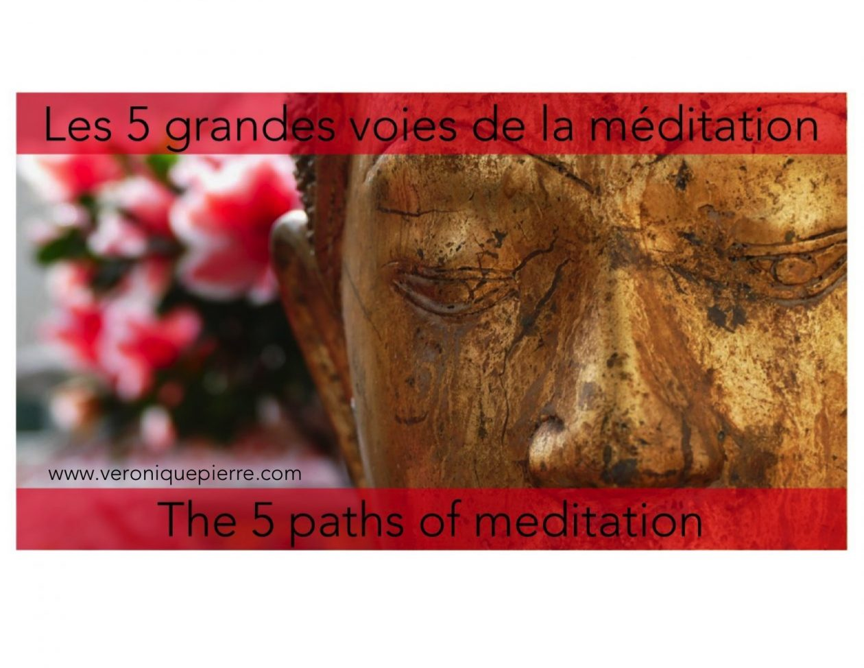 Les 5 grandes voies de la méditation / The 5 paths of meditation